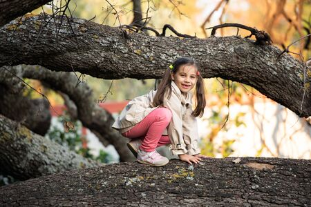 Portrait of Little Child Girl in Autumn in Nature Park Stock Photo - 132955346