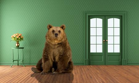 groene grizzly beer zitten in de lege woonkamer Stockfoto