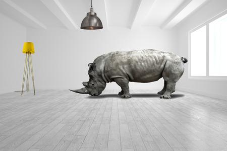neushoorn in minimalistische kamer