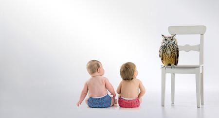 uil met twee baby's