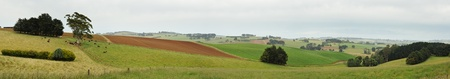 Panorama at South Gippsland - red clay soils area with farms on hills, eucalyptuses, cows and potato fields photo