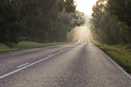 Dark asphalt road through australian forest in fog with bright sunrise light at the end photo