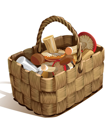gift basket: knitted basket from vines with different mushrooms