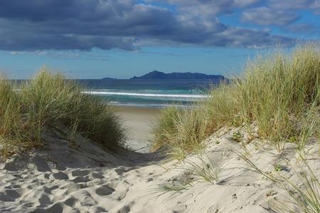 dunes: dunes Stock Photo