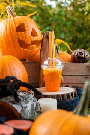 terrifying: Halloween cocktail near pumpkins decoration on background. Punch for a party. Stock Photo