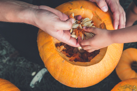 A close up of daughter and father hand who pulls seeds and fibrous material from a pumpkin before carving for Halloween. Prepares a jack-o-lantern. Decoration for party. Happy family. Little helper. Top view.
