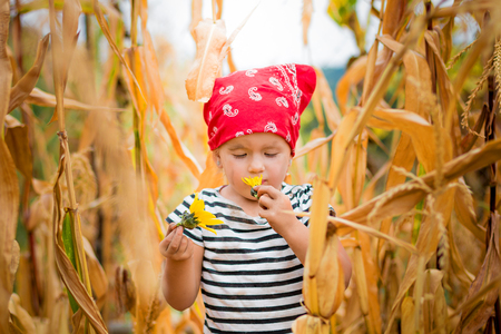 Dirty child looking at the flower in her hand in red bandana and stripe tee in the cornfield. dry corn