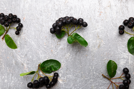 Chokeberry on grey background. Aronia berry with leaf. Top view. Copy space Stock Photo