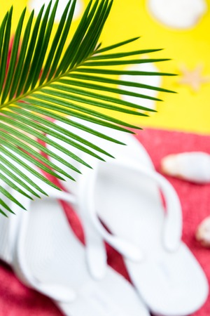 Tropical Background Palm Trees Branches with blurred Set of Womans Things Accessories to Beach Season