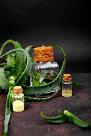 Aloe vera oil in glass bottle and towel for spa on brown background. Star cactus, Aloin, Jafferabad, Aloe barbadensis, Barbados herbal medicine for skin treatment and care.