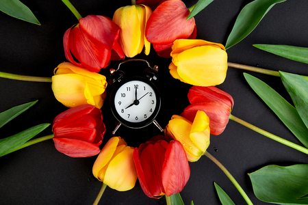 Alarm clock with red and yellow tulip around.