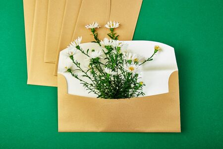 Gold envelope with a spring flower arrangement on green background. Flat lay, top view. Opened envelope. Festive greeting concept Фото со стока