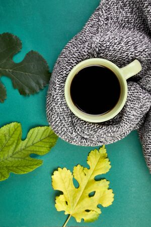 Knitted scarf with warm cup of tea, autumn leaves on green background, Autumn. Fall season. Still life. Top view. Falt lay, Фото со стока