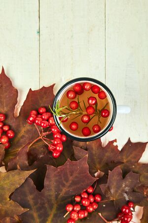 Mug or cup of hot viburnum tea with on white wooden background, autumn maple red leaves and viburnum berries on white background. Top view. flat lay. copy space. Winter. Christmas. Cold season.