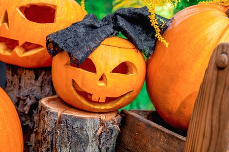 Halloween. Close up of Jack-o-Lantern. scary pumpkin with a smile on a stump in green forest, outdoor.