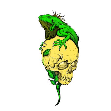 Iguana Skull Vector Tattoo Design Nature Illustration