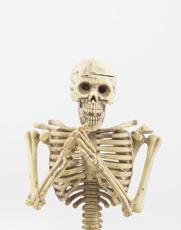 canvass: Skeleton begging on white background Stock Photo