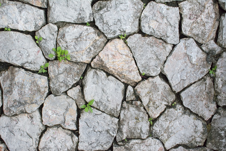 rock wall use for background or texture