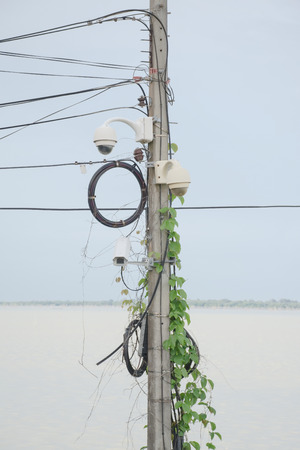 CCTV on electricity post with vines, closed circuit camera.
