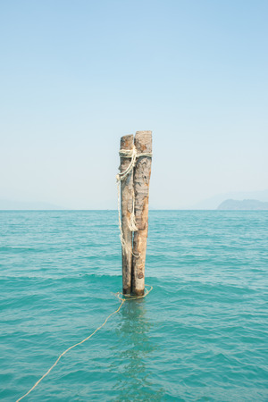Coconut stump in the beautiful blue sea at koh wai, trat, thailand.