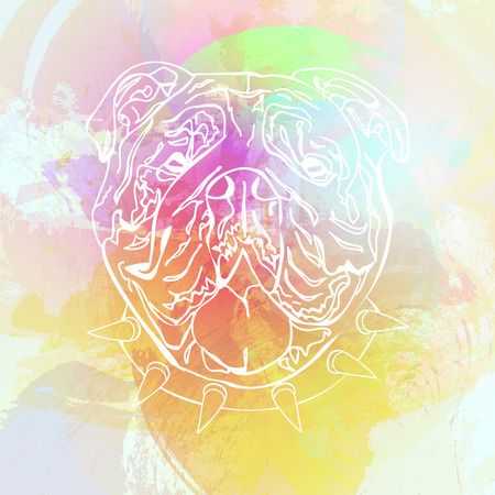 nouse: Fashion abstract colorful watercolor vector background with English bulldog. Fashion dog Illustration