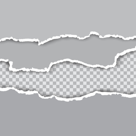 Squared ripped horizontal paper strips for text or message on white vector background