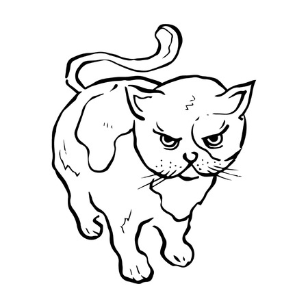 Angry Kitty Line Drawing