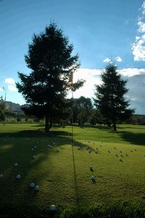 Golf field with pines Stock Photo