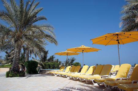 Palms, umbrellas and sunbeds. Emirates coast.