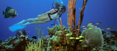 A scuba diving girl in a bikini poses above the coral reef in the warm waters in Caribbean surrounded by fish