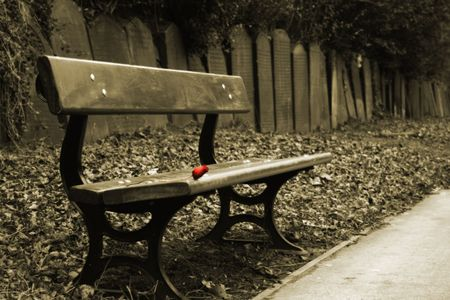 Sepia shot of bench with a single red rose and a row of gravestones behind