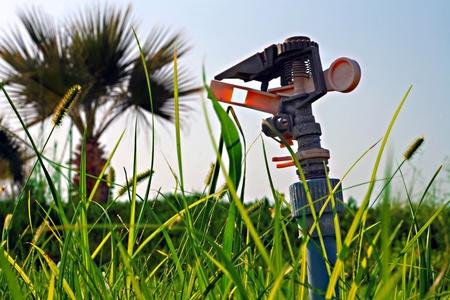 Garden lawn water sprinkler photo
