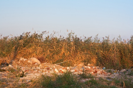 illegal garbage dump in countryside photo