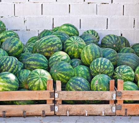street market: Crates of watermelons for sale at street market