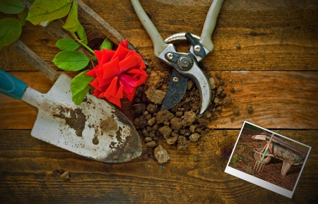 red soil: Gardening tools on a rustic wooden table with polaroid of old rusty wheelbarrow Stock Photo