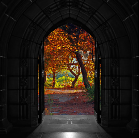 Old arched church doors opening out onto beautiful, colorful forest Stockfoto