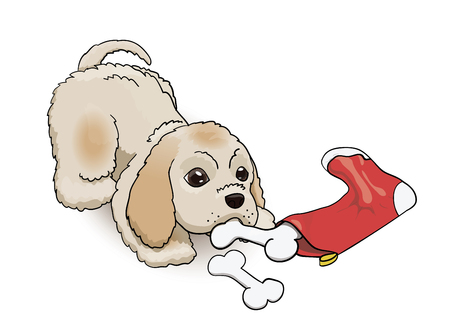 New Year Eve Sock Present for Cocker Spaniel Puppy. Cartoon Fluffy Cute Character Got Present Bones. Dog Vector Illustration