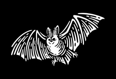 Vampire Bat vintage engraved illustration. Ilustración de vector