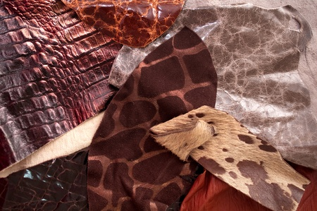 leathery: leather samples  Stock Photo