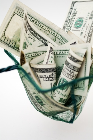 fish net: dollar bills in fishing net
