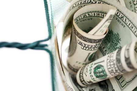 dollar bills in fishing net  photo