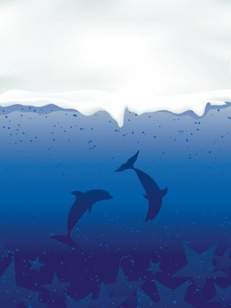delfini: Sott'acqua con i delfini e le stelle