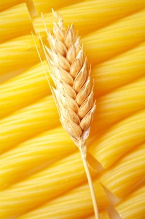 macarrones: Pasta con espiga de trigo