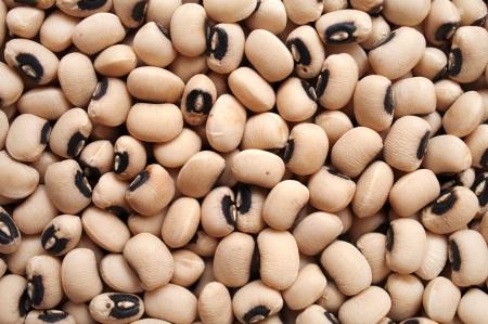 eyed: black eyed peas background image Stock Photo
