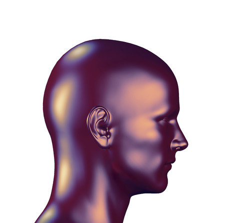 human head: 3d rendered illustration of a male head isolated on white background