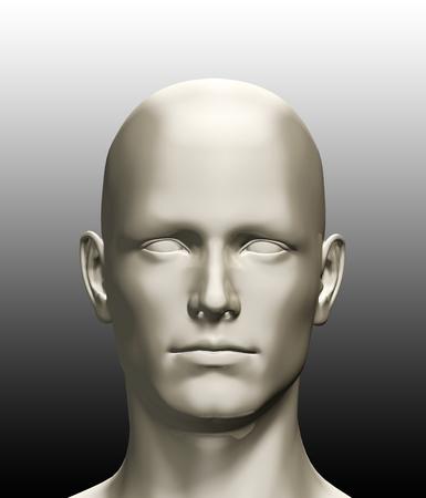 人間の頭部の 3 d レンダリングされた図