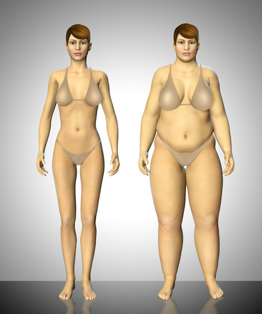 waistline: 3d fat and thin woman before and after concept illustration