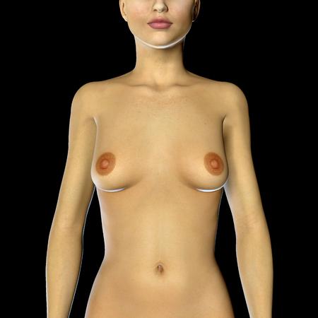 tetas: 3d rinden de una mujer con pequeños senos copa