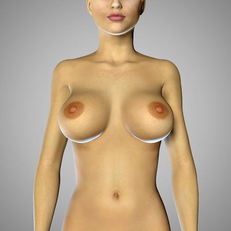 tetas: 3d rinden de una mujer con pechos grandes Foto de archivo