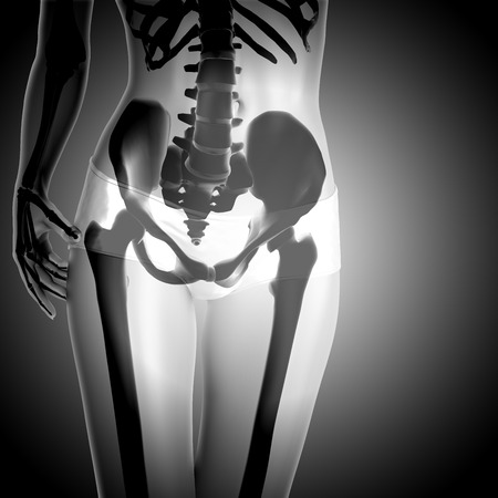 3D render of a female figure with skeleton Stock Photo